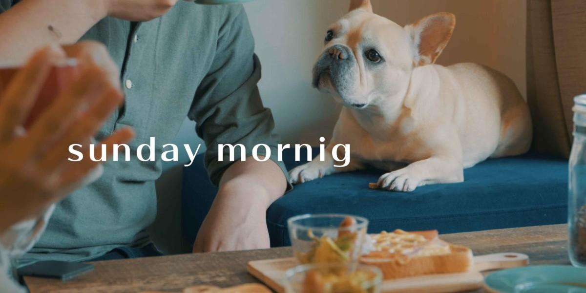 family morning VLOG